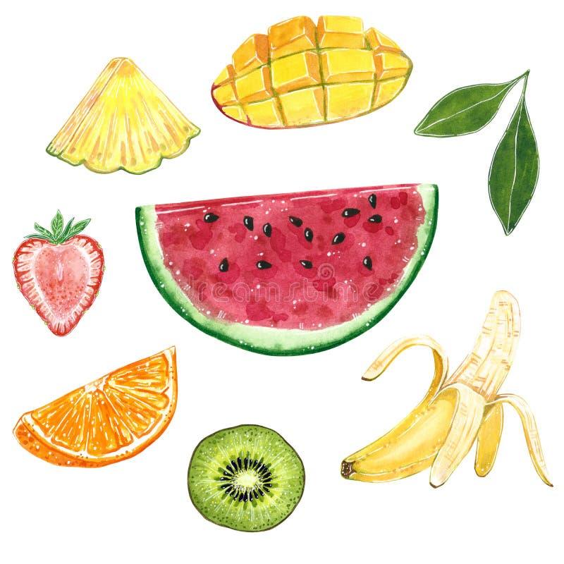 Kiwi, plátano, piña, sandía, naranja, mango, fresa y una hoja verde, ejemplo de la acuarela stock de ilustración