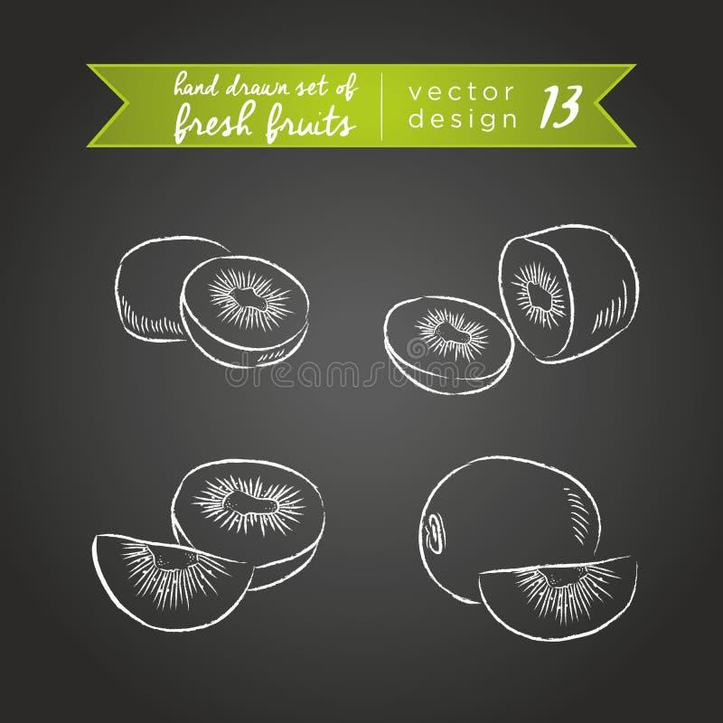 Kiwi Placez des fruits frais, entier, demi et mordu avec la feuille Illustration de vecteur D'isolement sur le tableau noir illustration libre de droits