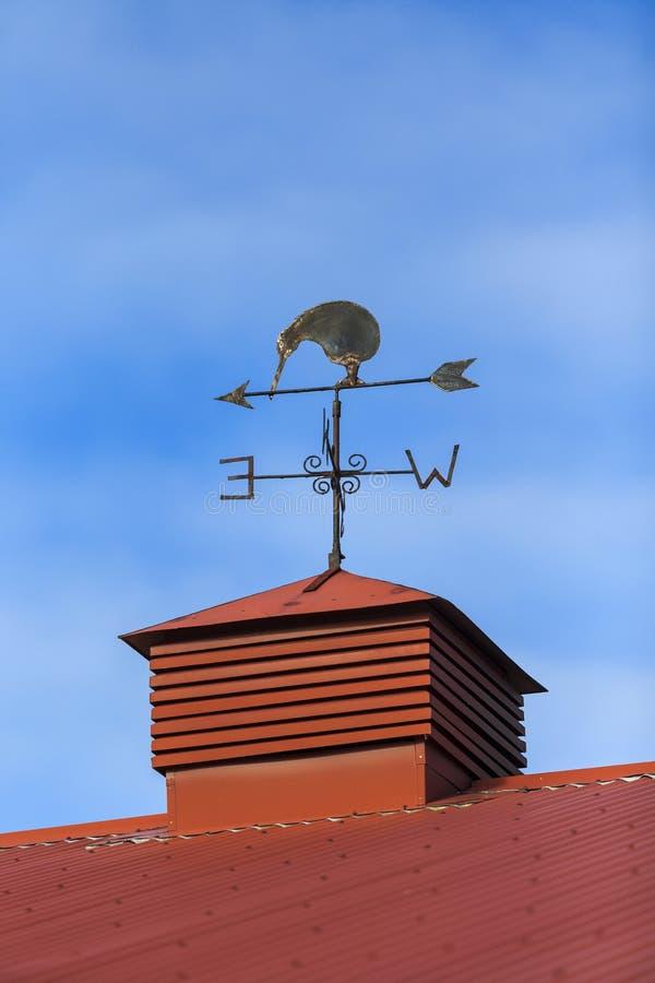 Kiwi ptasi pogodowy vane zdjęcie stock