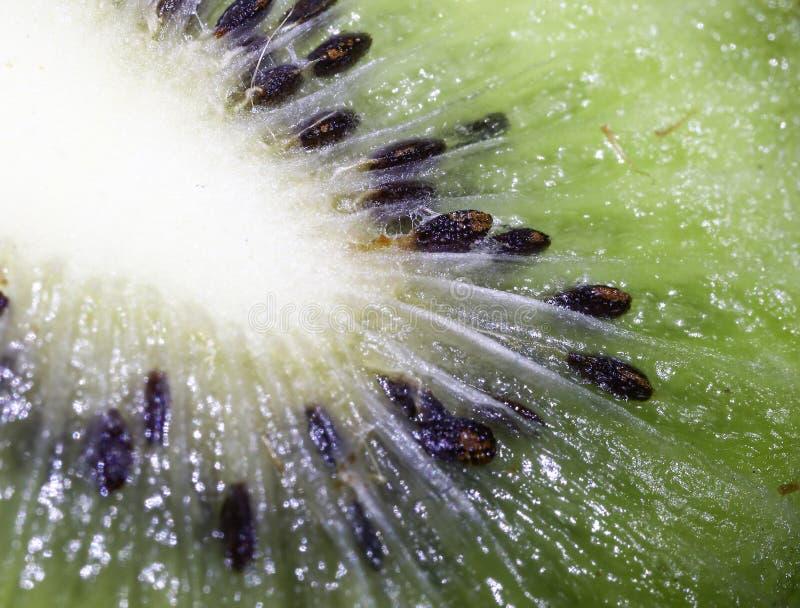 Kiwi, seed, design, fruit, streaks, shine, texture, glare, flesh stock photo