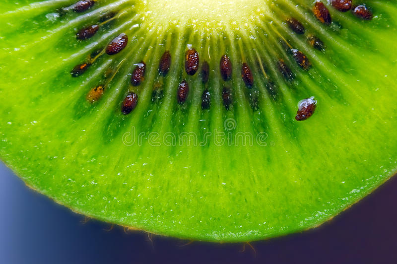 Kiwi slice. royalty free stock images