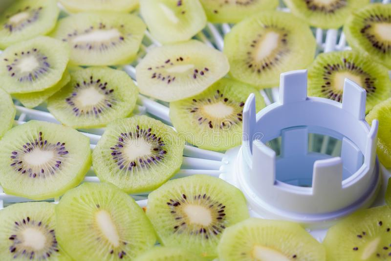 Kiwi slices on trays of special electric fruit dryer stock photo