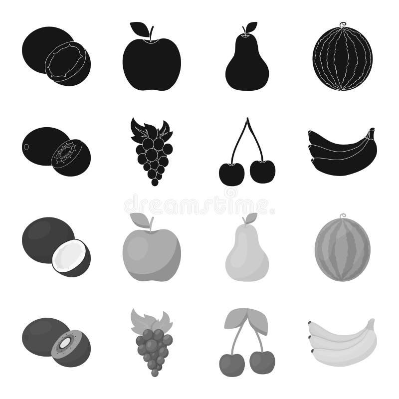 Kiwi, uvas, cereza, plátano Las frutas fijaron iconos de la colección en web negro, monocromático del ejemplo de la acción del sí stock de ilustración