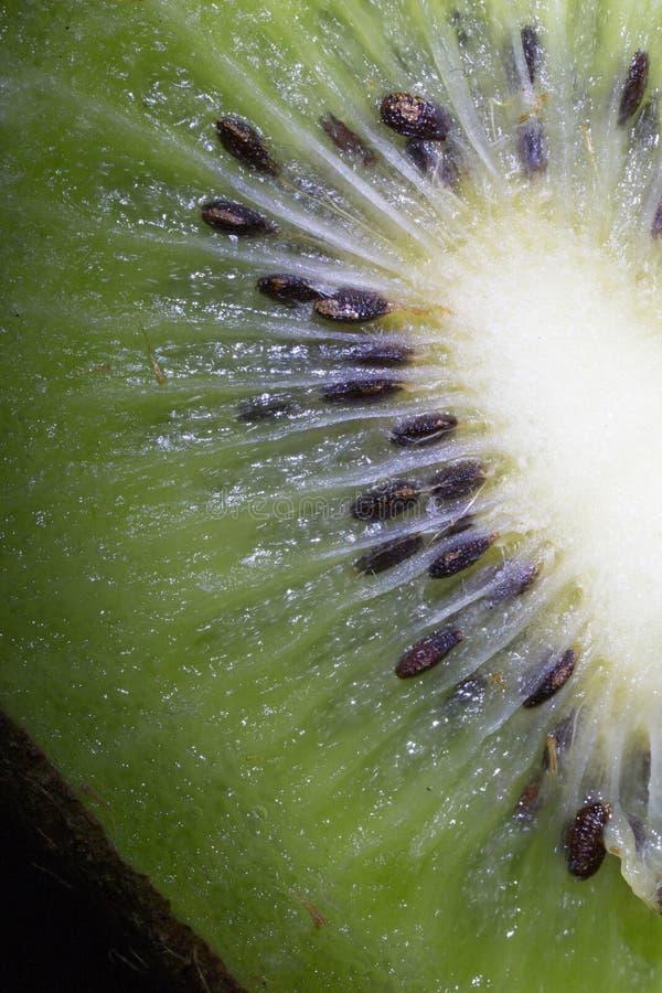 Kiwi, ziarno, projekt, owoc, smugi, połysk, tekstura, świecenie, ciało obrazy stock