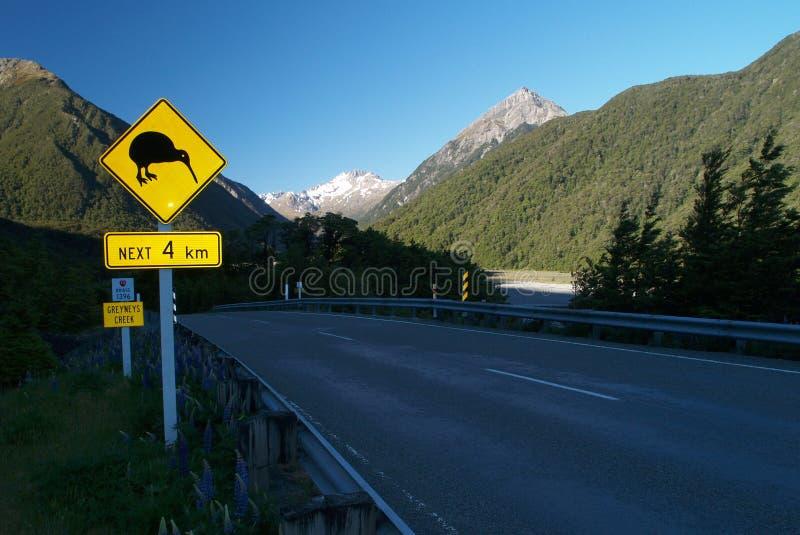 Kiwi znak zdjęcie royalty free