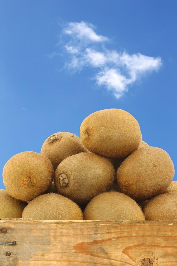 Kiwifruit in een houten krat stock fotografie