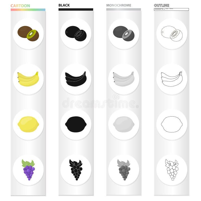 Kiwis, banane mûre, citron aigre, un groupe de raisins Les fruits ont placé des icônes de collection dans le contour de monochrom illustration stock
