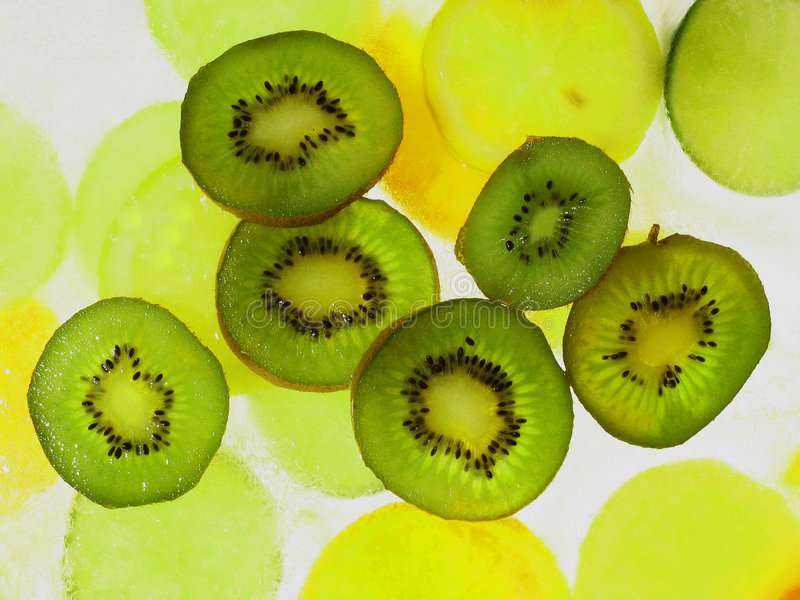Kiwis on ice stock image