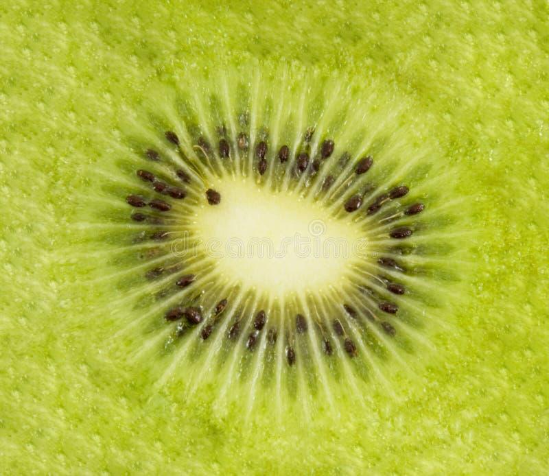 Kiwischeiben-Supermakroschießen der frischen Frucht stockbilder