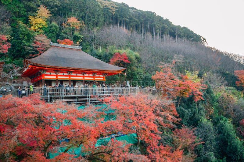 Kiyomizu-dera świątynia z jesieni klonowym drzewem w Kyoto, Japonia obraz stock