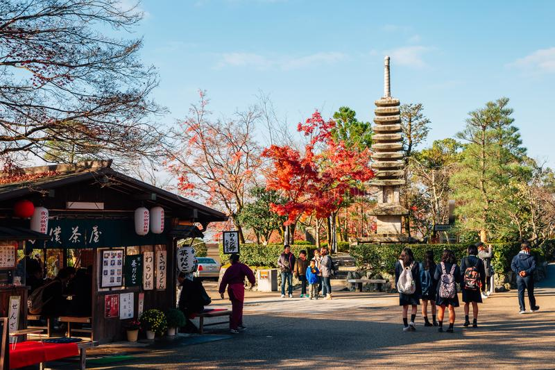 Kiyomizu-dera świątynia z jesieni klonowym drzewem w Kyoto, Japonia obrazy royalty free