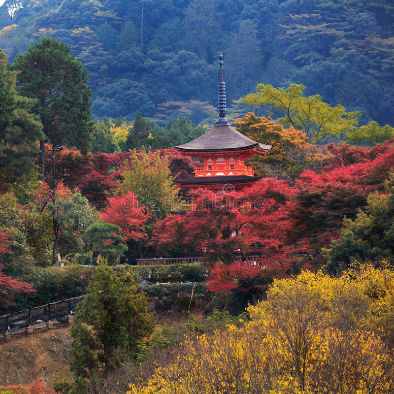 Kiyomizu-dera i höstsäsong arkivfoto