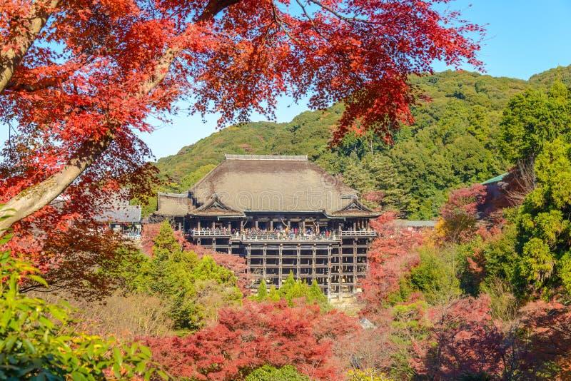 Kiyomizu-deratempel in autum Jahreszeit in Kyoto lizenzfreie stockbilder