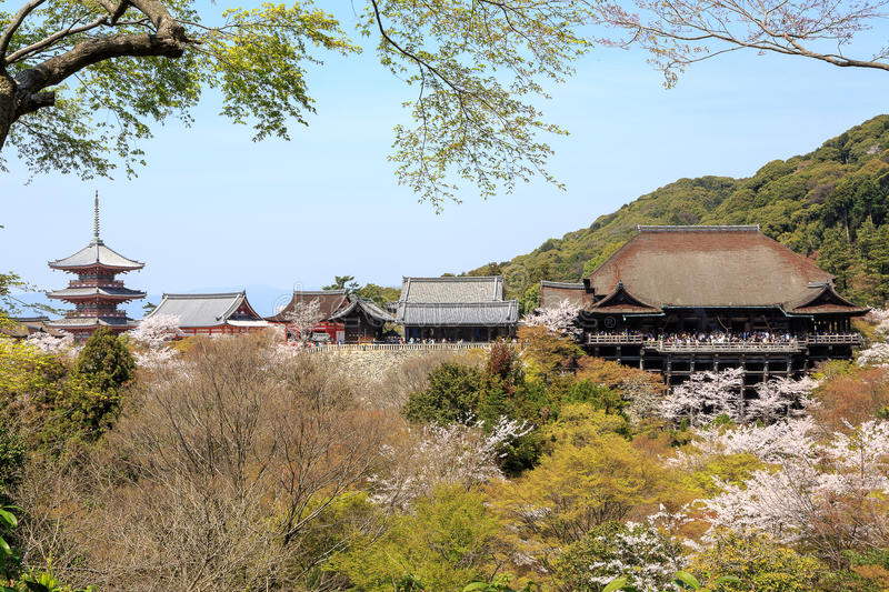 Download Kiyomizu Temple And Cherry Blossom In Kyoto Stock Images - Image: 38382414