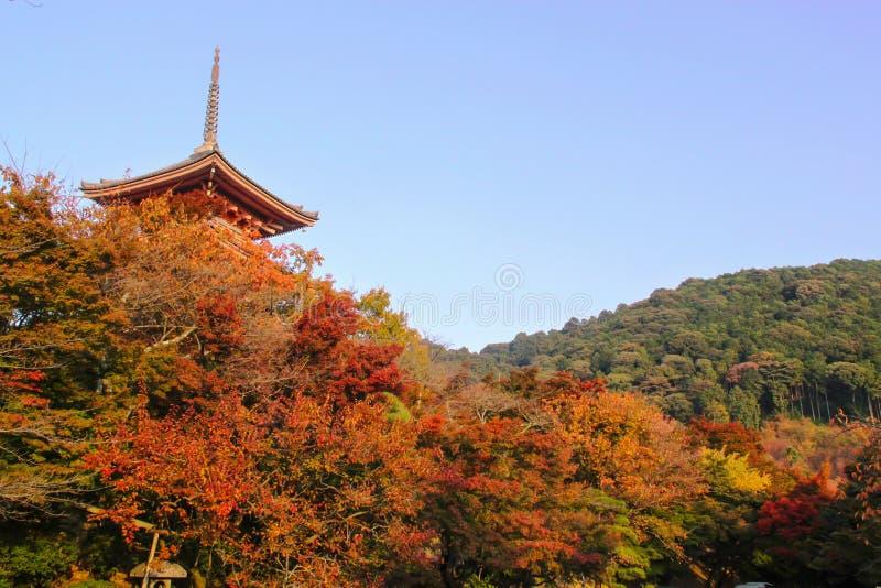 Kiyomizu - templo do dera escondido atrás da folha das árvores imagem de stock royalty free