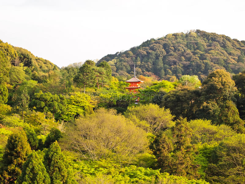 Kiyomizu wooden stage temple at Kyoto , Japan royalty free stock images