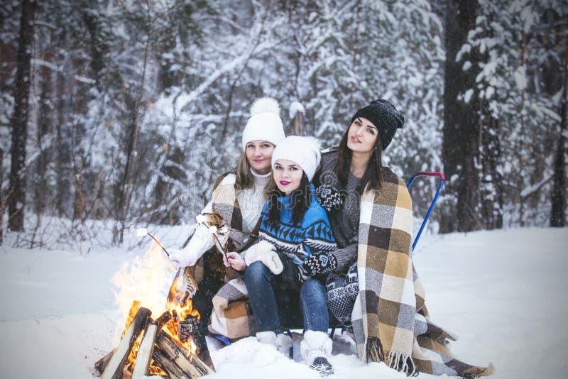 Klädde härliga unga kvinnor för flickvän varmt i vinter parkerar royaltyfri foto