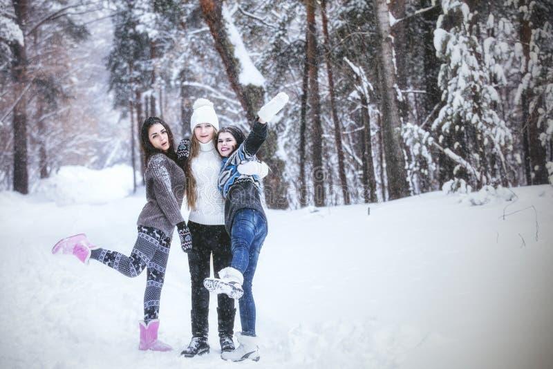 Klädde härliga unga kvinnor för flickvän varmt i vinter parkerar arkivbilder
