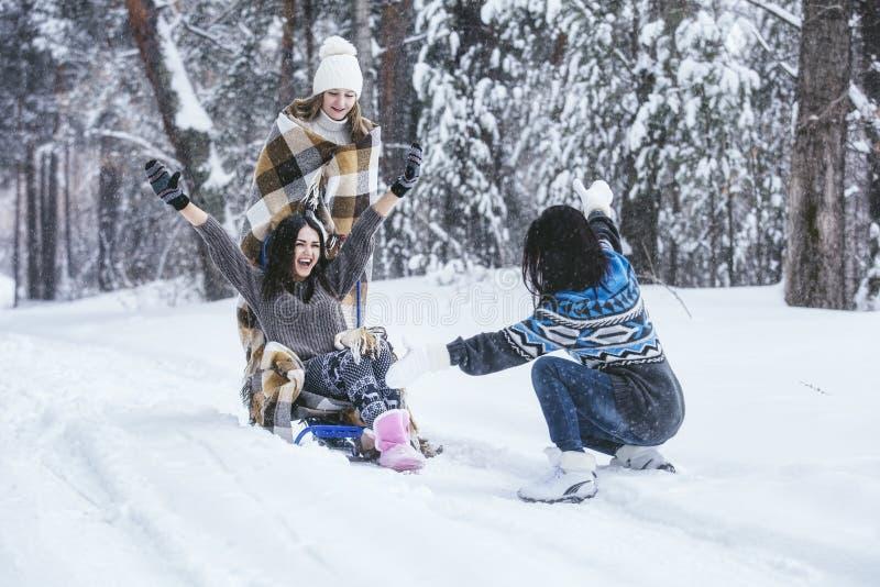 Klädde härliga unga kvinnor för flickvän varmt i vinter parkerar royaltyfri fotografi