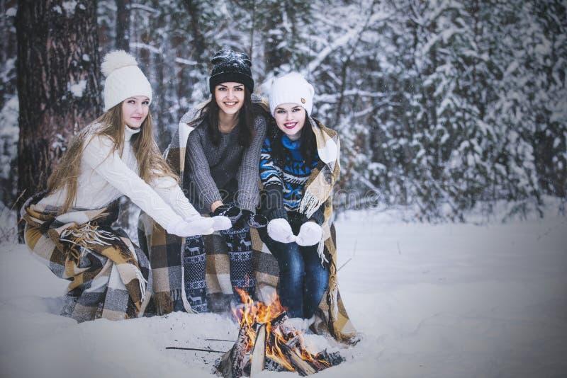 Klädde härliga unga kvinnor för flickvän varmt i vinter parkerar fotografering för bildbyråer