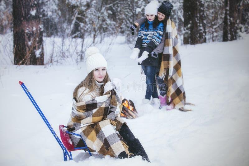 Klädde härliga unga kvinnor för flickvän varmt i vinter parkerar arkivfoton