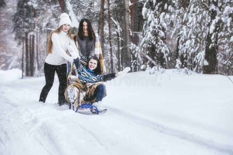 Klädde härliga unga kvinnor för flickvän varmt i vinter parkerar royaltyfria bilder