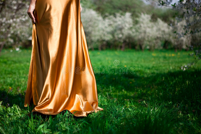 klänningguld arkivbild
