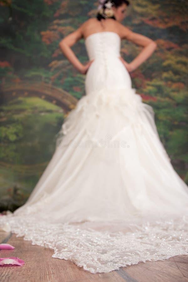 klänningsilhouettebröllop royaltyfria bilder