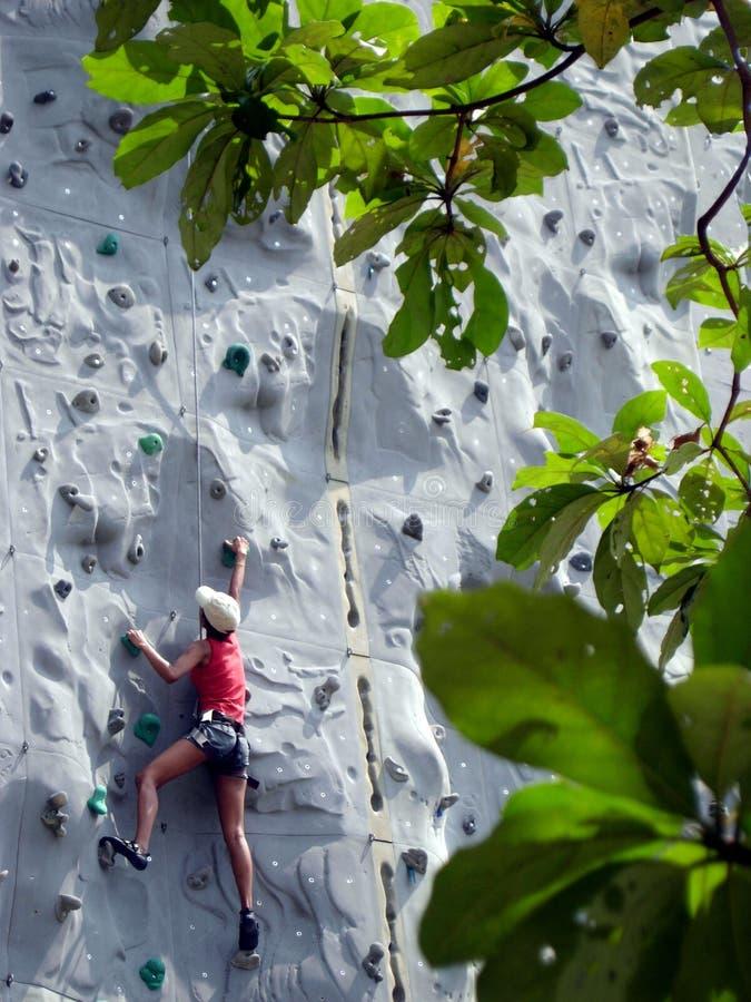klättra att gå upp vägg