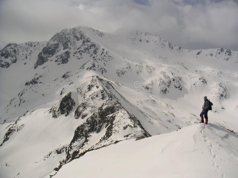 klättra high arkivbilder