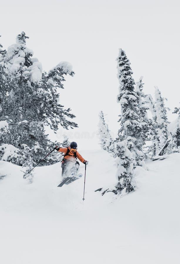 Klättra i berg att gå upp längs ett snöig berg med skidar i ryggsäcken Skidåkare på klättraspåret för freeride-nedstigning royaltyfria bilder