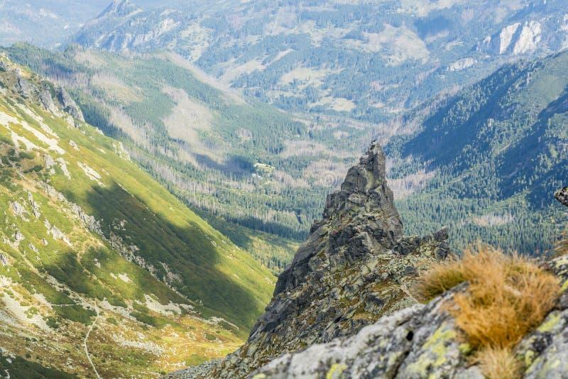 Klättrare och berghandböcker med klienter, medan klättra det populära Mnich munkmaximumet i den polska Tatrasen royaltyfri bild