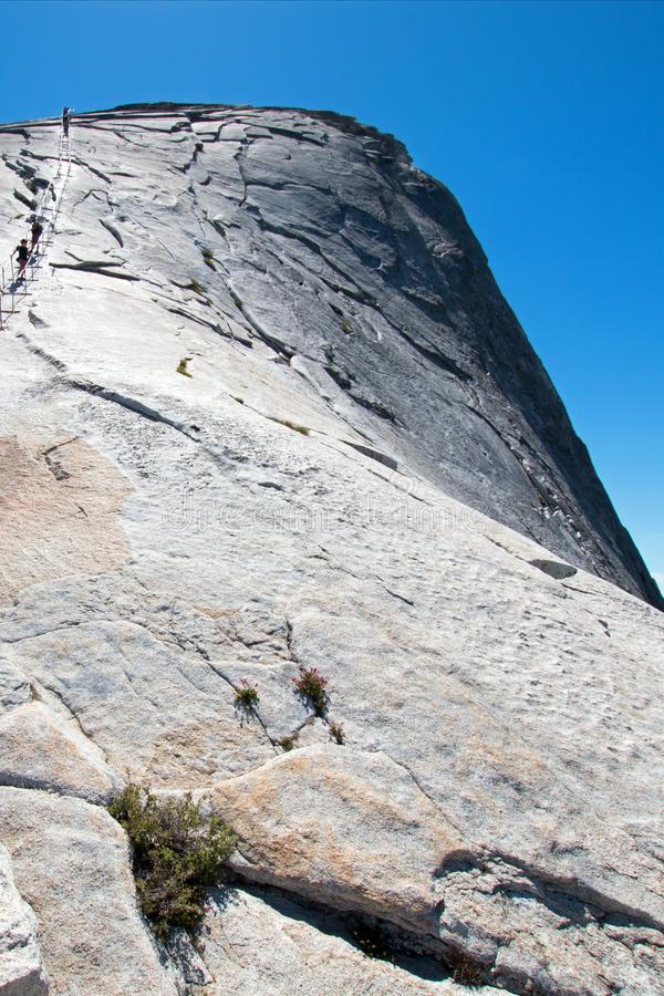 Klättrare som använder kablar för att stiga halv kupol i den Yosemite nationalparken i Kalifornien USA royaltyfri bild