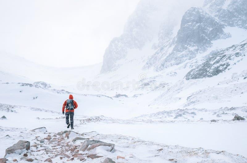 Klättraren går bara i höga berg på blåsigt snöig väder royaltyfria bilder