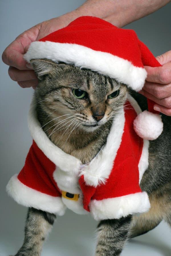 Klaar voor Kerstmis stock foto