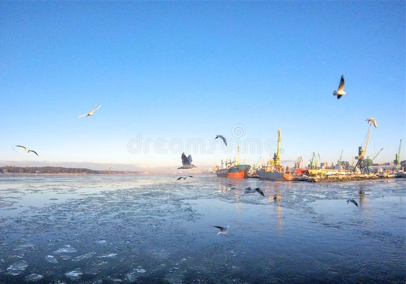 Klaipeda, Litouwen royalty-vrije stock afbeeldingen