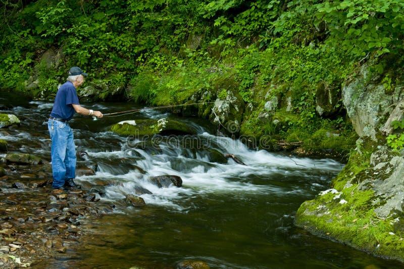 klar fiskare som fiskar den små strömforellen royaltyfri fotografi