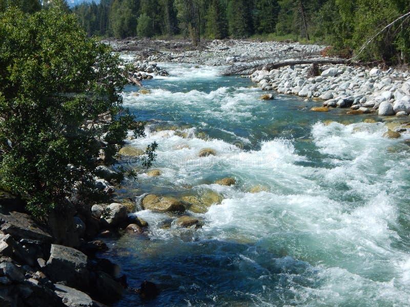 Klar flod för berg Kraftig ström av vatten arkivfoton