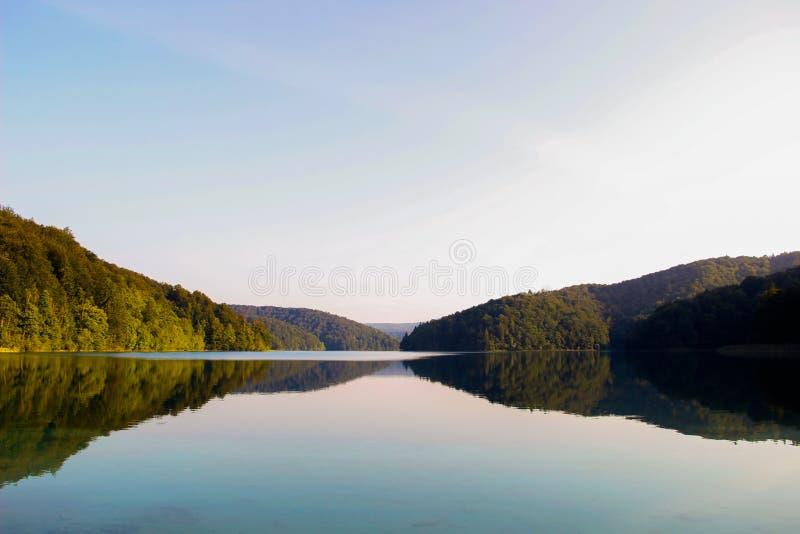 Klar himmel och vatten delade vid en skog royaltyfria foton