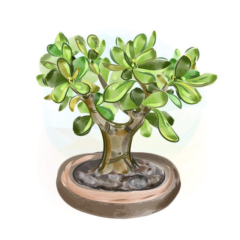 klar vektor för nedladdningillustrationbild Bonsai för vattenfärgpengarträd Träd för handattraktionjapan stock illustrationer
