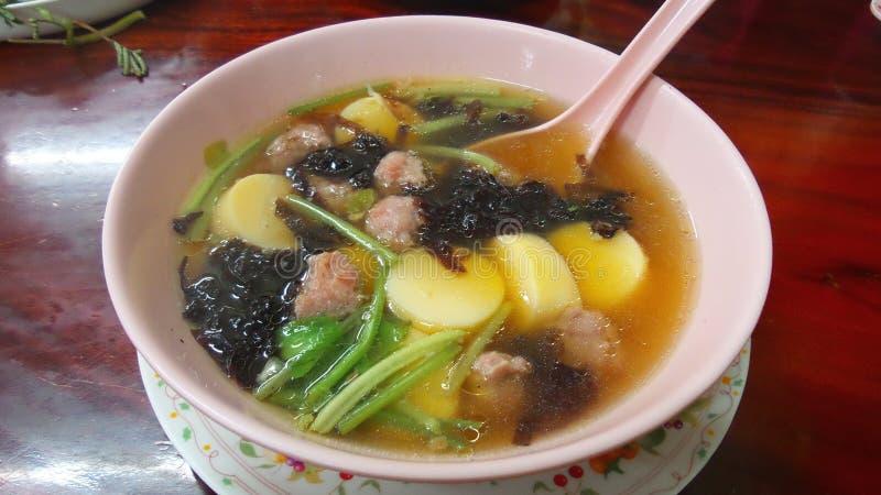 Klare Brühe mit Meerespflanze, weichem Tofu und gehacktem Schweinefleisch lizenzfreie stockfotografie
