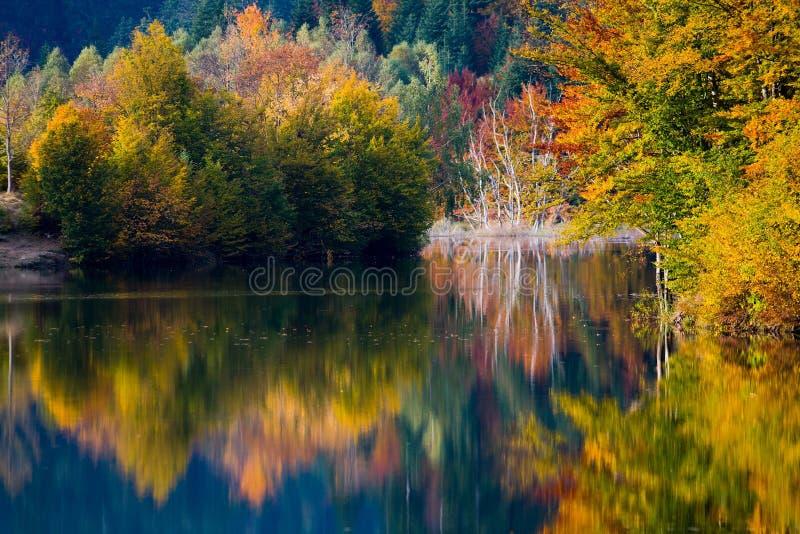 Klare Farben des Herbstes auf See lizenzfreie stockfotografie