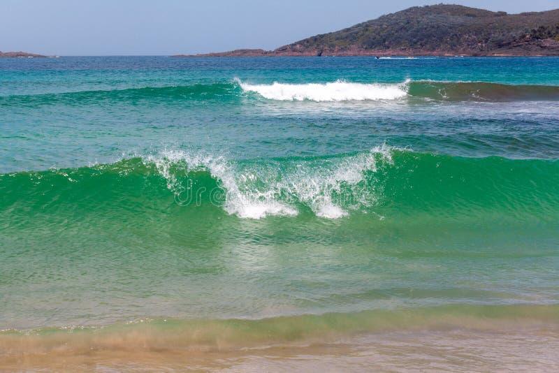 Klare grüne brechende Wellen nahe Ozeanküstenlinie stockfotos