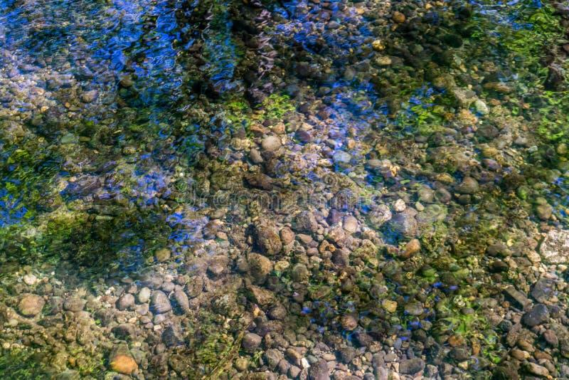 Klare Nebenfluss-Nahaufnahme stockbild