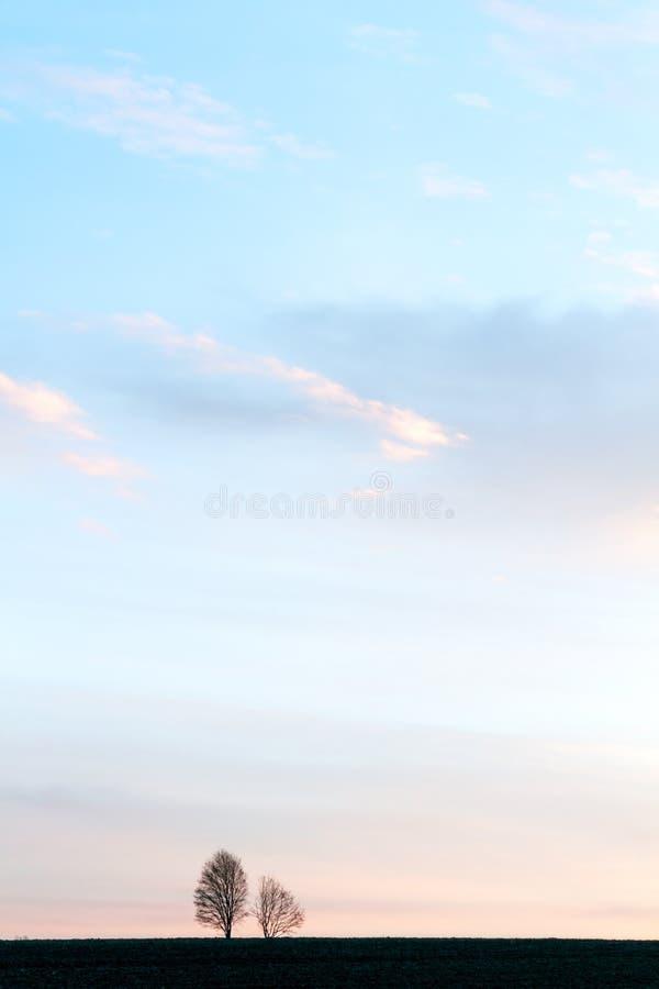 Klarer Frühlings-Sonnenaufgang stockbilder