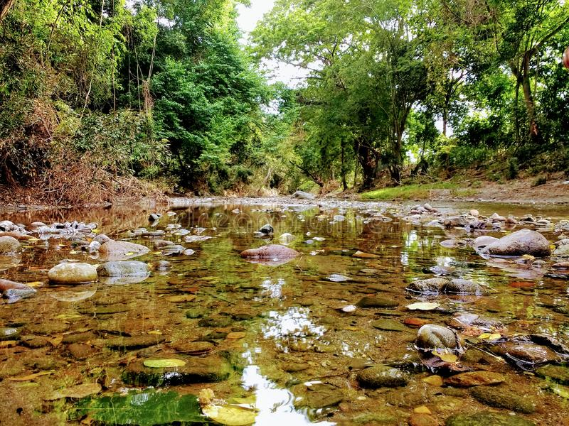 Klarer kleiner Fluss stockbild
