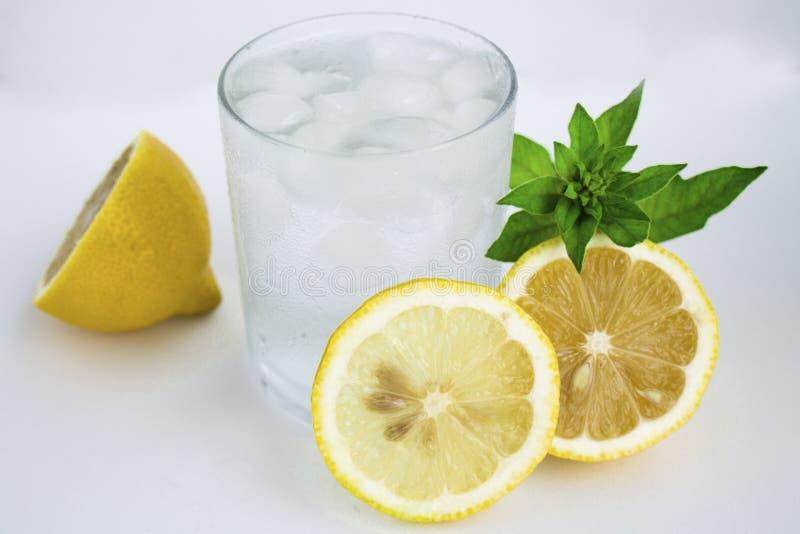 Klart exponeringsglas med kallt vatten och citron och mintkaramell royaltyfri foto