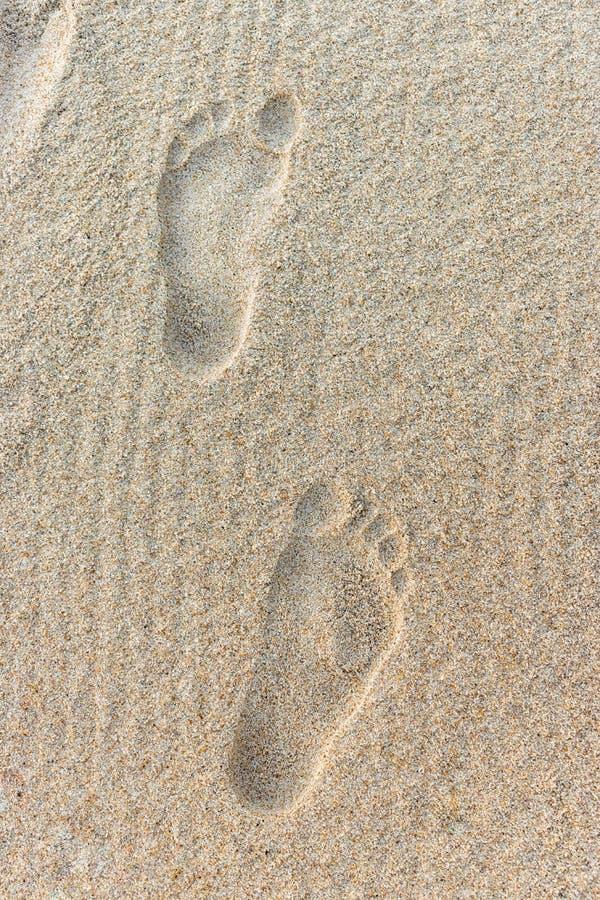 Klart mänskligt fotspår på sand på stranden arkivfoto