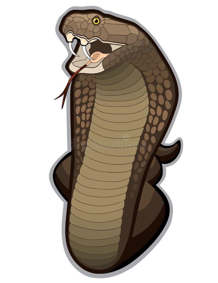 klart ormslag för kobra till vektor illustrationer