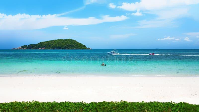 Klart vatten och blå himmel på den tropiska sandiga stranden på solig sommar royaltyfri bild
